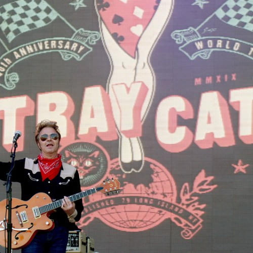 Photo story: The Stray Cats at the Eurockeennes Festival