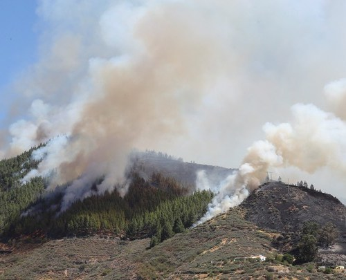 Spanish firefighters overwhelmed by size of fire in Gran Canaria