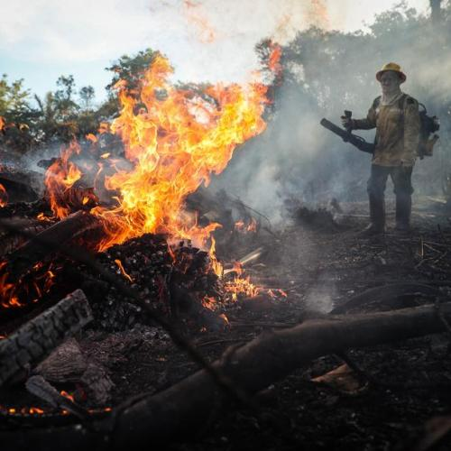 Photo Story: Fires still burning in the Amazon forest in Brazil