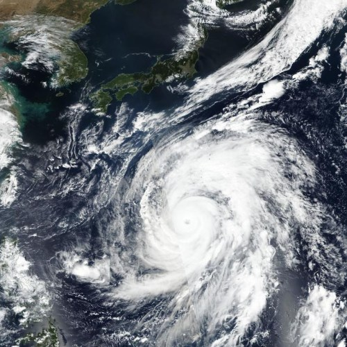 Japan braces for impact of Typhoon Hagibis, Rugby World Cup matches cancelled