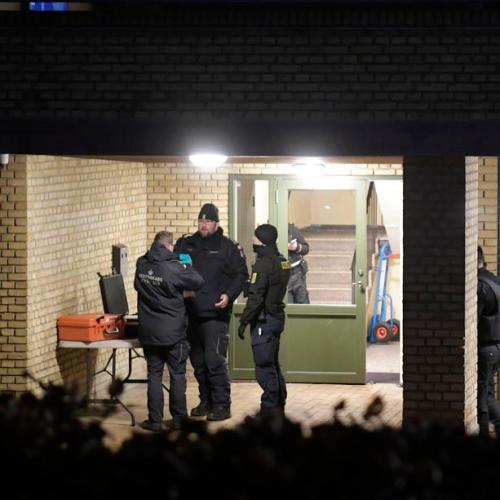 Police in Denmark foil terror plot