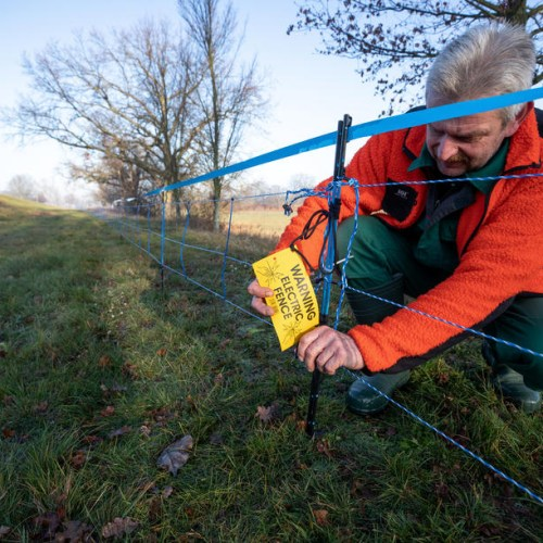 Germany puts up fences at Polish border to contain swine fever spread