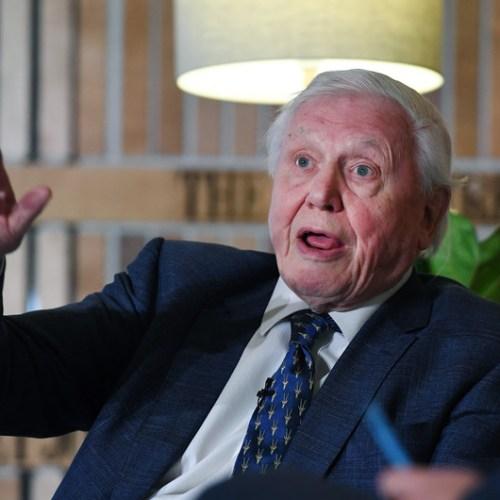 Sir David Attenborough warns of climate 'crisis moment'