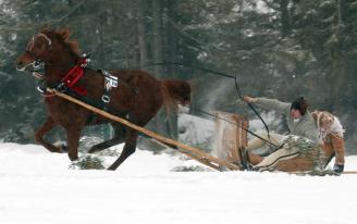 Polish Highlander Parade horse races