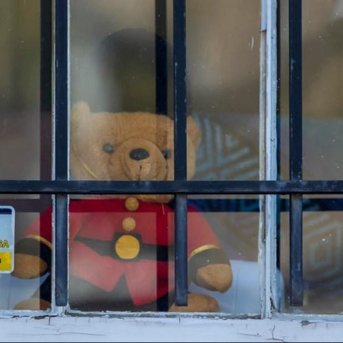 Worldwide teddy bear hunt helps distract children under lockdown