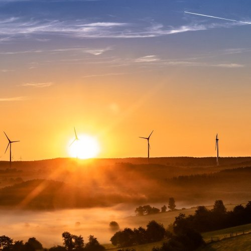 Global investors push for green recovery agenda