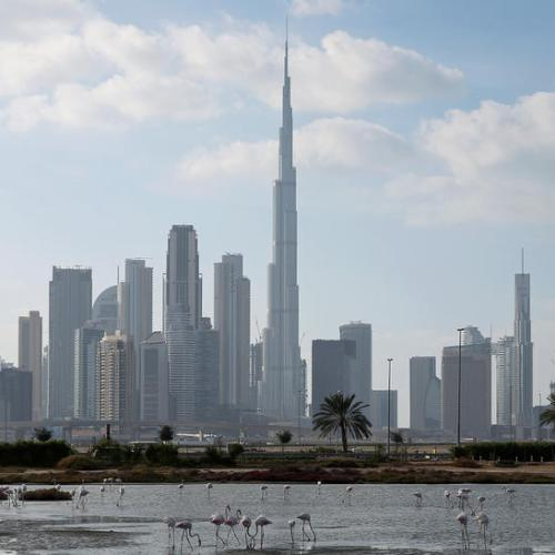 UAE banks risk rise in bad loans