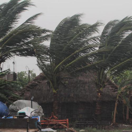 Cyclone in India, Bangladesh leaves trail of death and destruction