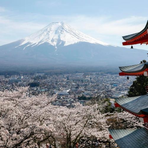 Japan's travel ban has hit 85% of European businesses there