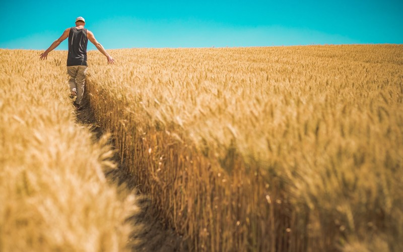 European Commission calls for action in protecting seasonal workers