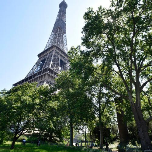 French economy shrank by record 13.8%