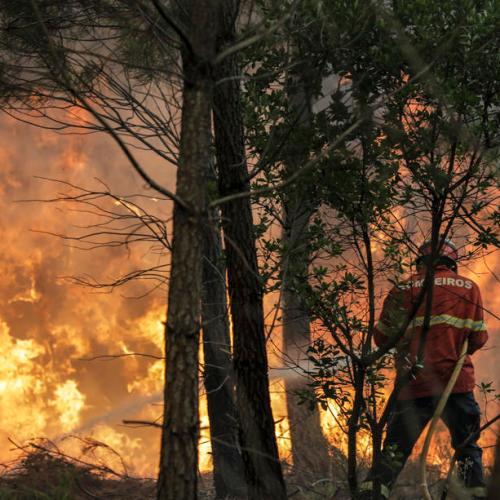 Portugal blaze under control, but firefighters on alert