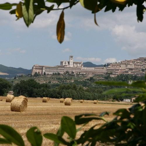 18 cases of coronavirus at Assisi monastery