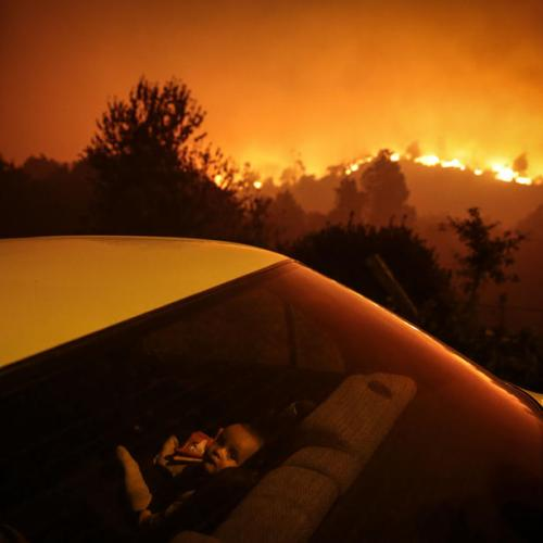 Photo Story: Forest fire in Oliveira de Frades, Portugal