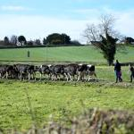 EU countries back binding green farming schemes