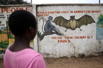 Congo declares end of Ebola outbreak, sees lessons for COVID fight
