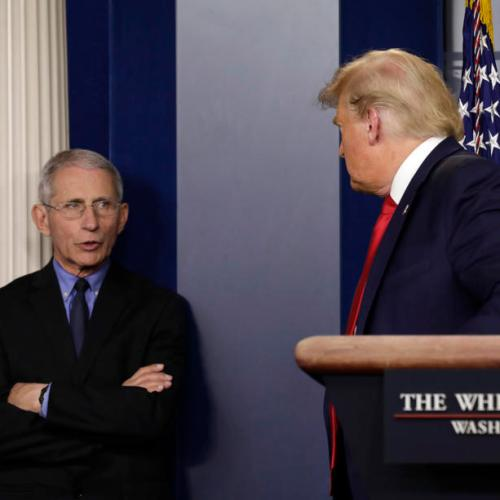 Trump suggests he might try to fire Fauci post-election