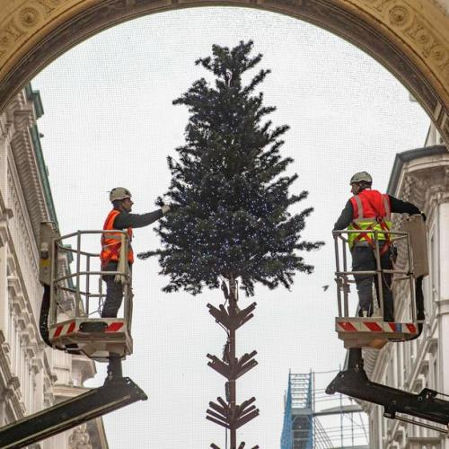 Photo Story: Christmas tree put up in Milan