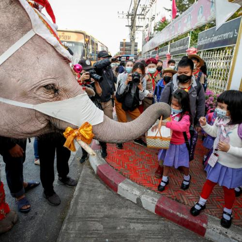 Santa rides elephants to Thai town, bearing gifts of face masks
