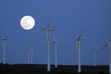 EU countries could face national renewable energy goals