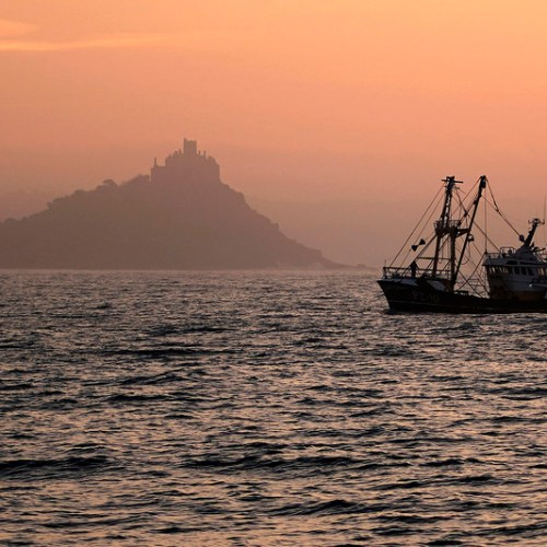 UK fishing sector sees more job losses if post-Brexit export troubles not tackled soon