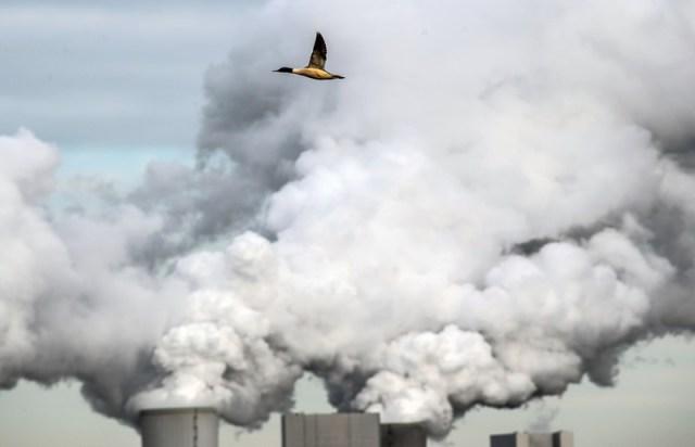 U.S. must halve emissions to galvanize global climate action – UN chief