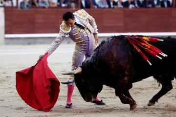Madrid to host charity bullfight for matadors left jobless by COVID-19