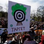 MEPs reach deal to ensure access to environmental justice for EU citizens