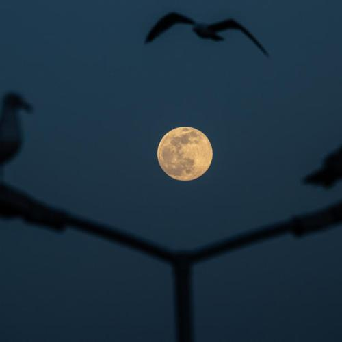 Photo Story – Super full moon seen from Istanbul