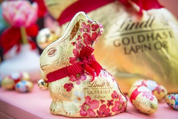 Lindt chocolate bunny hops towards victory in trademark battle