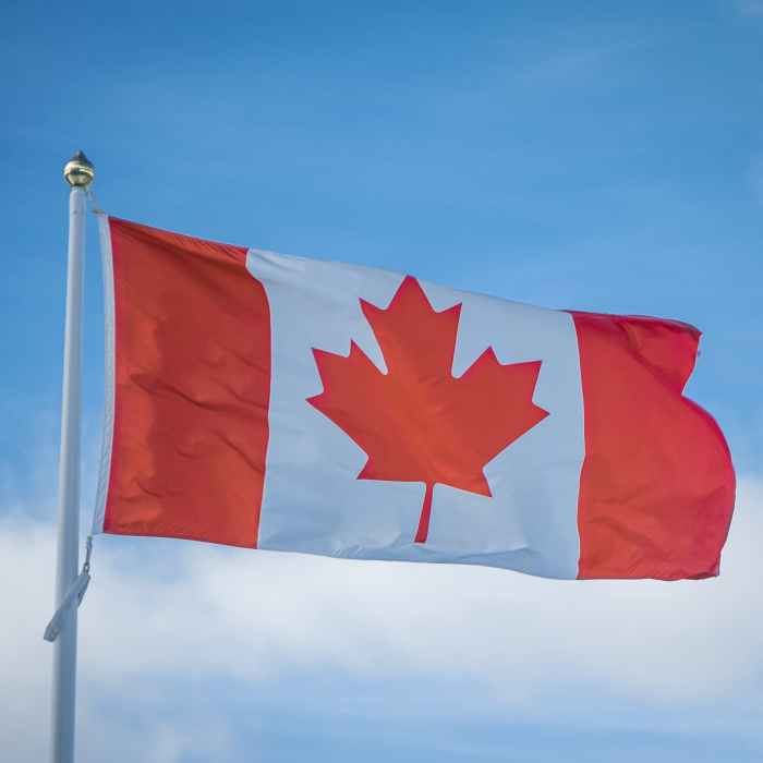 Warning foreign actors will seek to interfere in next Canada election