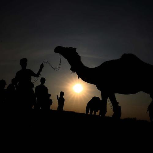 Photo Story – Eid al-Adha 2021 preparations in Pakistan