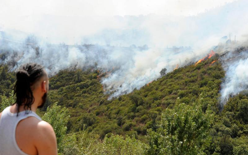 Algeria detains 30 people over devastating wildfires