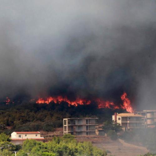 Greek firefighters battle growing forest blaze near Athens