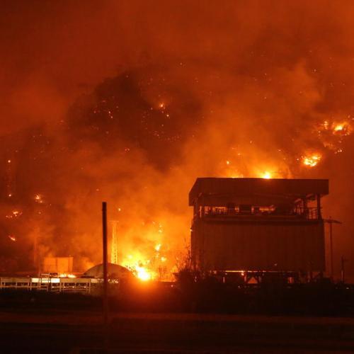 #HelpTurkey under investigation for 'spreading fear' about wildfires
