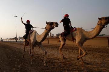 Photo Story – The first Female Camel Racing Series C1 Championship in Dubai