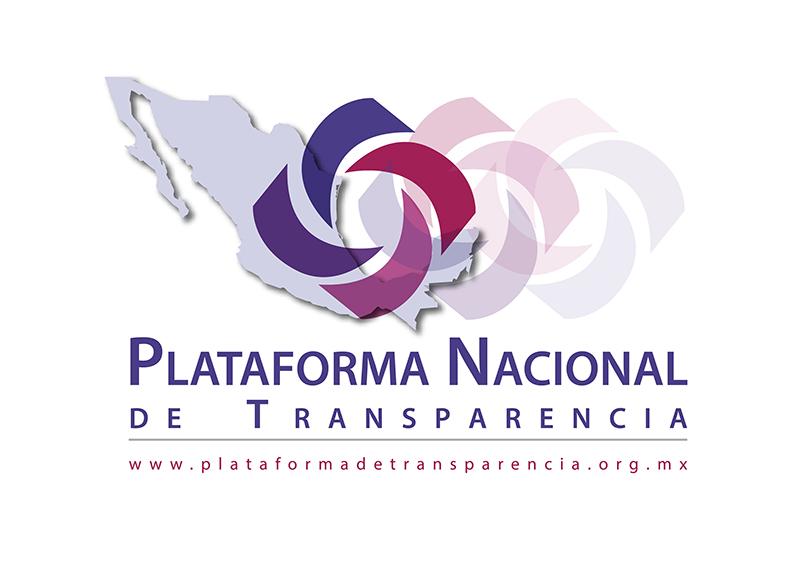 Resultado de imagen para Plataforma Nacional de Transparencia