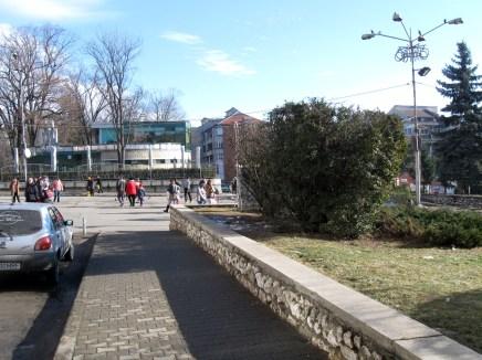 2015-01-11 (13)