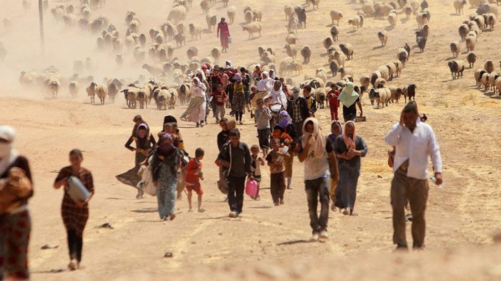 Le CDK-F appelle la communauté internationale à protéger les yézidis contre de futurs massacres et à reconnaître l'autonomie du Sinjar.
