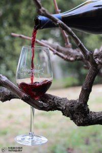 de la vigne au verre