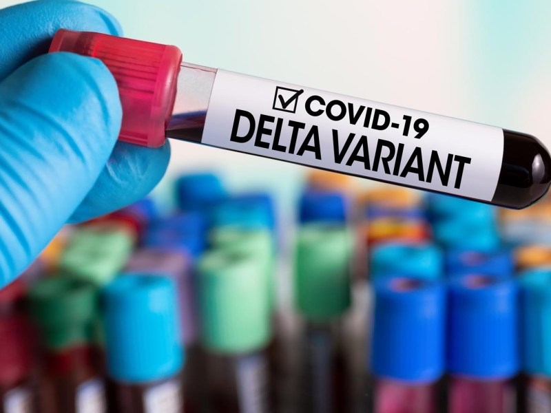 La Variante Delta de Covid 19 acelera el paso en Quintana Roo cdmx press