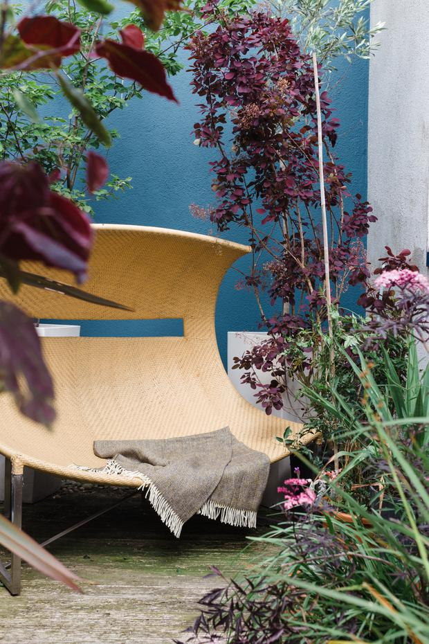 Colourful contrast: Mark Grehan has turned his balcony into a lush outdoor space