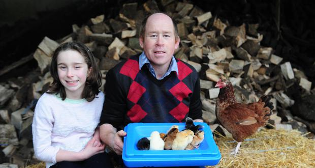 The Great Hen of Banagher, with her human family, the Dolans of Gortagowan!