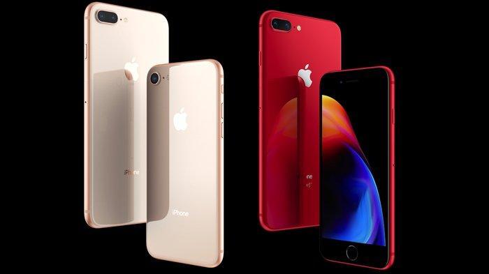 Harga bekas iphone 6s plus : Daftar Harga iPhone Terbaru Januari 2021 di iBox: iPhone 8 Plus 64GB Rp 9,5 Jutaan - Tribunnews.com