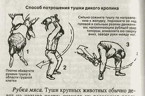 Brodude.ru_30.09.2014_onjwe3chppz7bi.