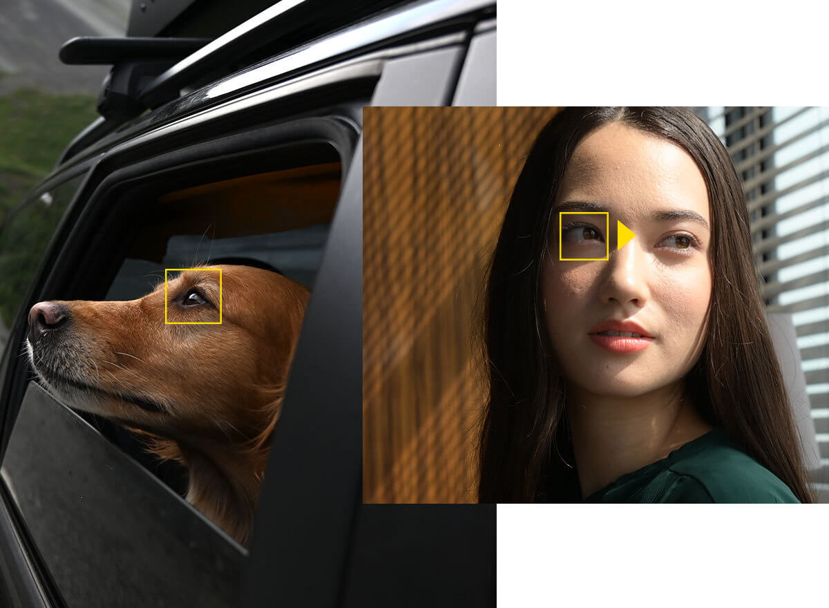 Easy Sophisticated Eyes