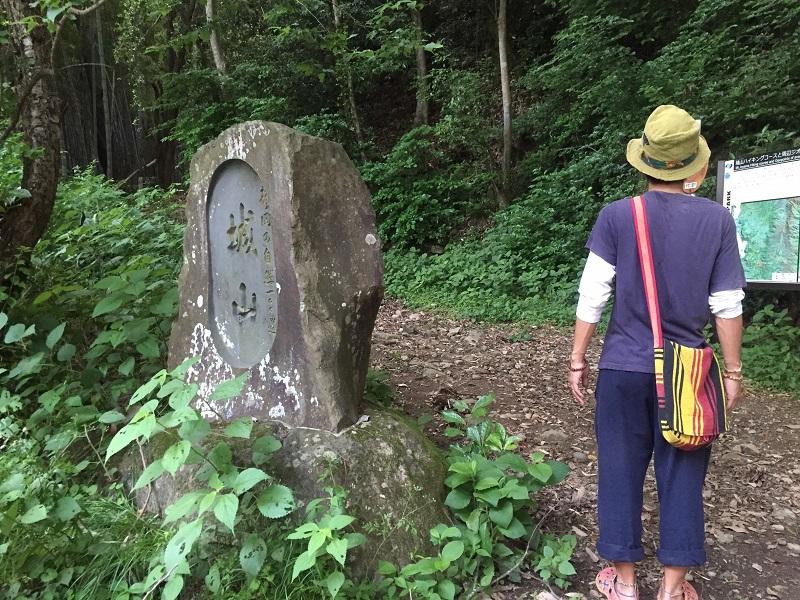 f:id:Daisuke-Tsuchiya:20160521224053j:plain