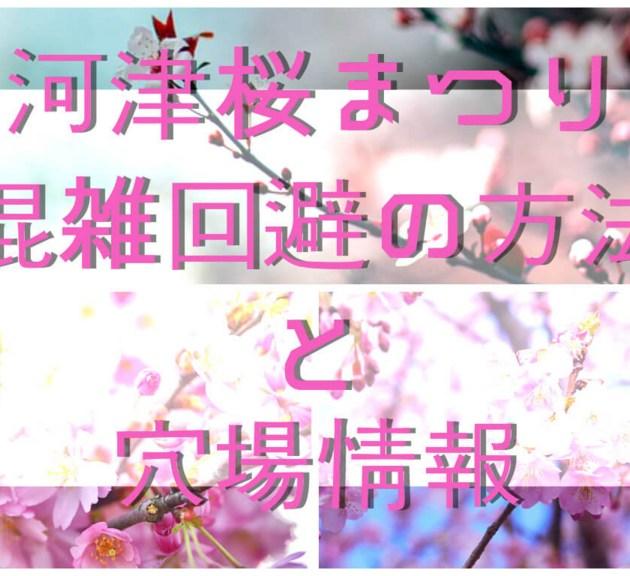 2020年度版「河津桜まつり」|混雑回避の方法と穴場情報【みなみの桜と菜の花まつり】