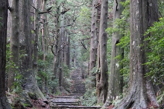 和歌山便利屋 こと「紀州はたご屋」民泊、不動産、建築の便利屋