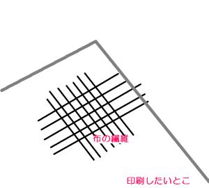 f:id:byousatsu-pn2:20160227134917p:plain